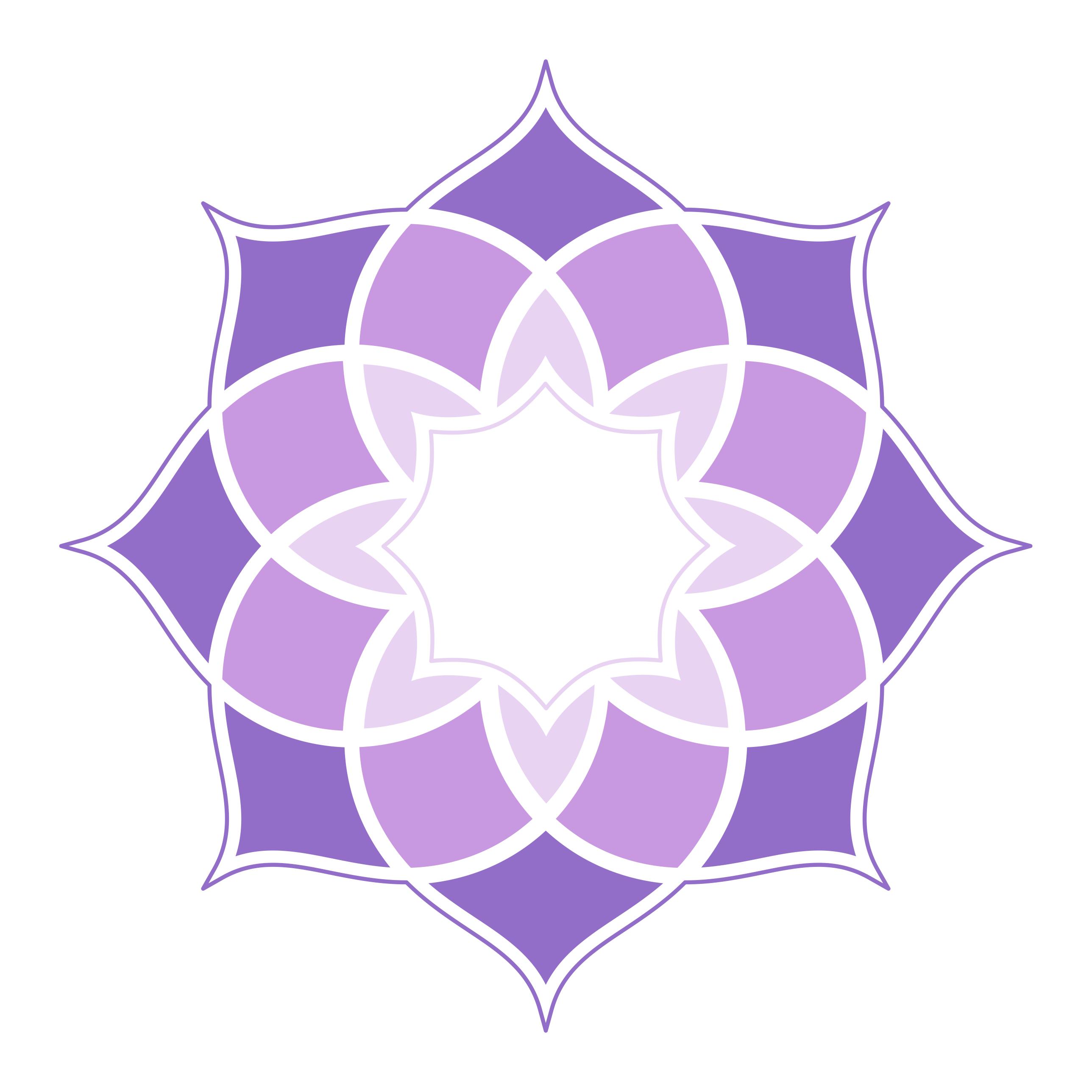 Shakti - Logo pentru facebook (marca)